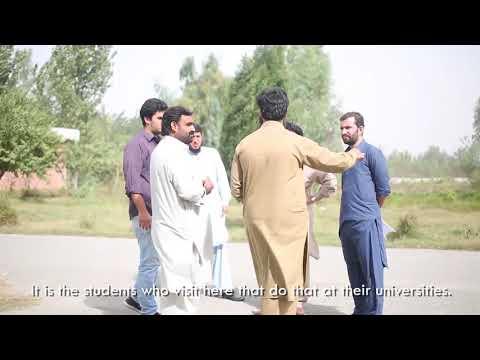 T  Peshawar  Fish Farm Video