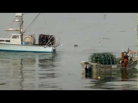 2012-2013 California Commercial Spiny Lobster Trap Laying