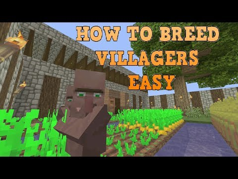 How To Breed Villagers After All Updates Minecraft