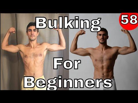 Bulking For Beginners {Announcement}