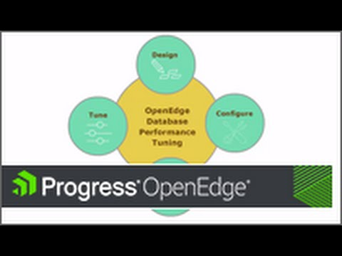 Designing an OpenEdge Database for Performance