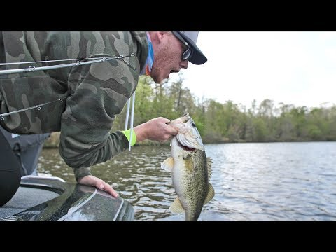Bass Fishing by Copper Head Snakes