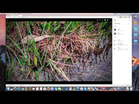 How To Edit In Google Photos Part 2