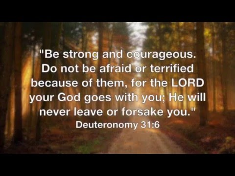 Top 7 Encouraging Bible Verses for Hard Times