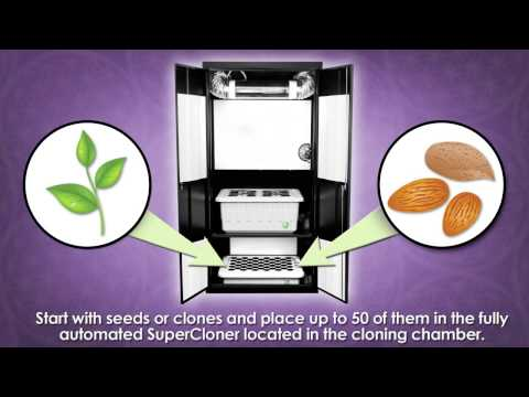 Supercloset Review | Grow Rooms | Hydroponic Systems | How To Grow Indoors