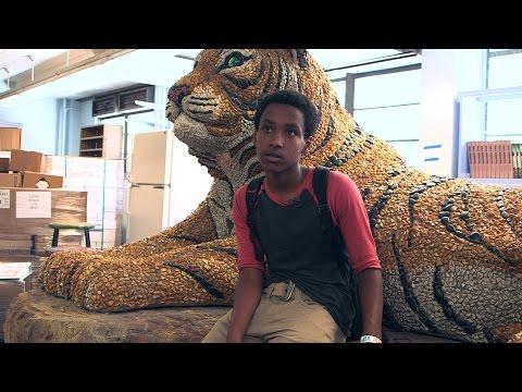 STE 19 Seg 3 Rainforest Art Project
