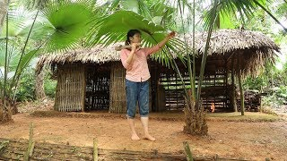 Primitive Technology:life in the forest