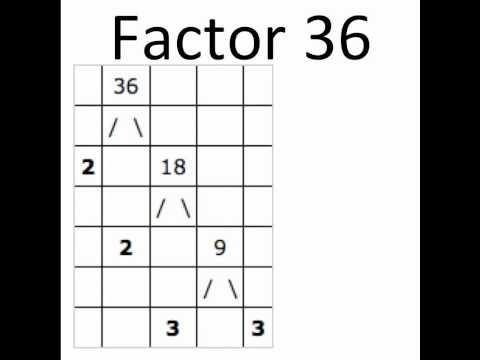 Factor A 36