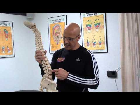 The Major Difference Between a BULGING DISC and HERNIATED DISC / Dr Mandell
