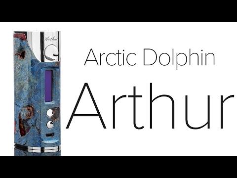 Arctic Dolphin Arthur