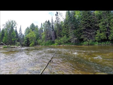 Wading Rivers for BIG Smallies on the Fly