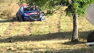 WRC Rallye Deutschland 2016 | Max Limit  | Lucky Escape