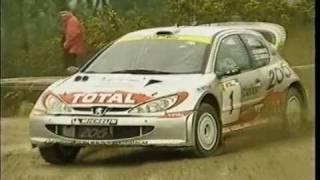 Peugeot 206 WRC - The Champion Lion
