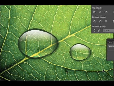 How to create a realistic water drop in Adobe Illustrator