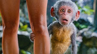 DORA AND THE LOST CITY OF GOLD - 5 Minutes Trailers (2019) Dora The Explorer