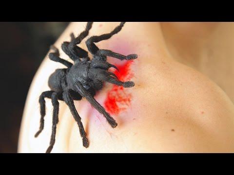 Free Download Video & MP3 Film Venom - jamendo.omote.me