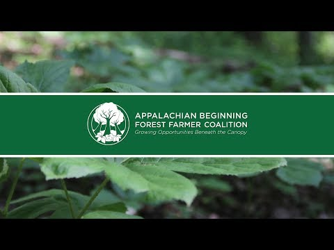 The Appalachian Beginning Forest Farmer Coalition