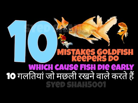 Goldfish_common mistakes fish keeper makes_ how to care gold fish Hindi\Urdu with English subtitles