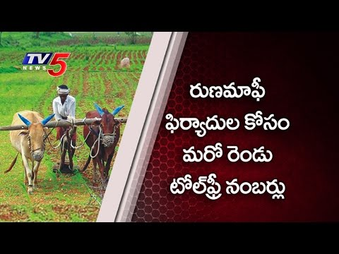 Toll Free Numbers for Loans Grievances in AP : TV5 News