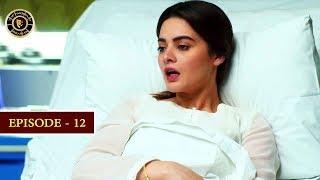 Hassad Episode 12 |  Minal Khan | Top Pakistani Drama