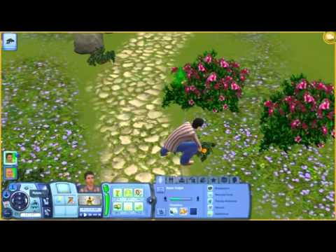 The Sims 3:How to get Flame Fruit