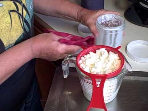 Storing Kefir Grains