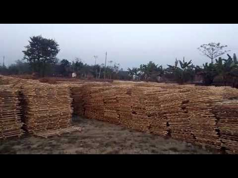 Social Forestry: Tree Guard making by community Entrepreneurs