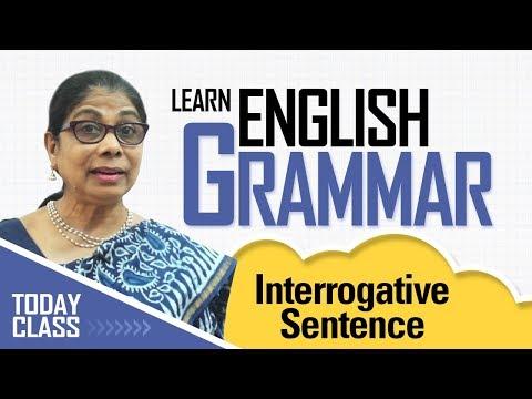 Learn English Grammar | Interrogative sentence | Basic English Grammar for kids