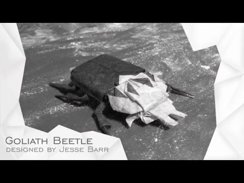 Origami Goliath Beetle by Jesse Barr (TUTORIAL) Collapsing