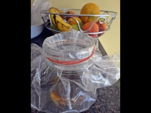 Making A Homemade Fruit Fly Trap - Пастка для плодовиx мух