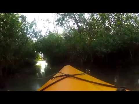 Kayaking on the Largo Intercoastal.