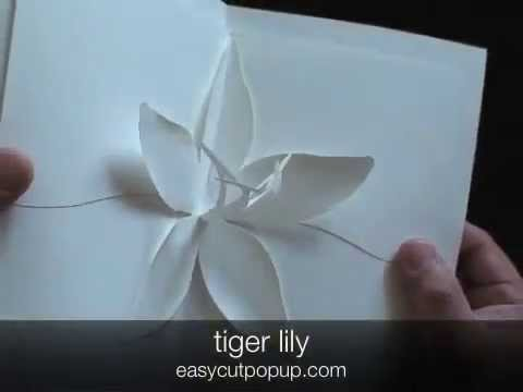 12 Beautiful Easy to Make Kirigami Pop-up Cards
