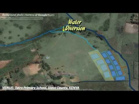 How to Position and Lay Out Your Fish Ponds