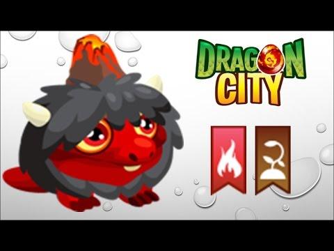 Dragon City - Getting Volcano Dragon 100% (No Hack)