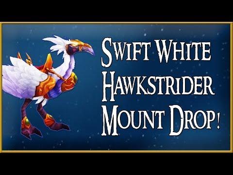 Swift White Hawkstrider Mount Drop! (World Of Warcraft)