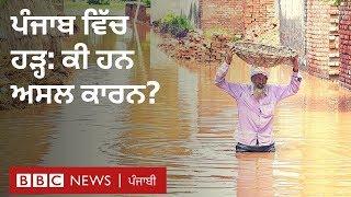 ਪੰਜਾਬ 'ਚ ਹੜ੍ਹ ਲਈ ਕੌਣ ਜ਼ਿੰਮੇਵਾਰ: ਕੁਝ ਮੁੱਖ ਸਵਾਲਾਂ ਦੇ ਜਵਾਬ I BBC NEWS PUNJABI