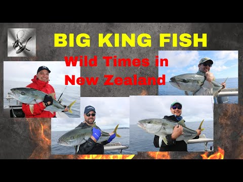 BIG KING FISH & SNAPPER, Wild Times in New Zealand | The Hook and TheWild Time