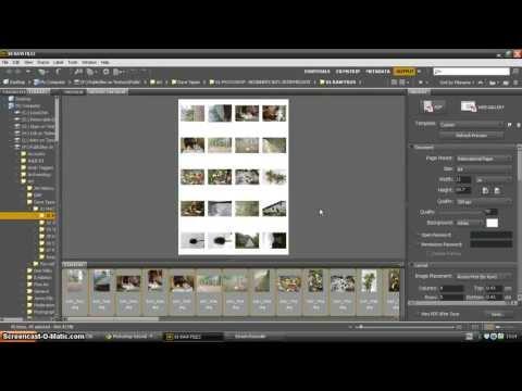 Adobe Bridge tutorial - how to create a contact sheet
