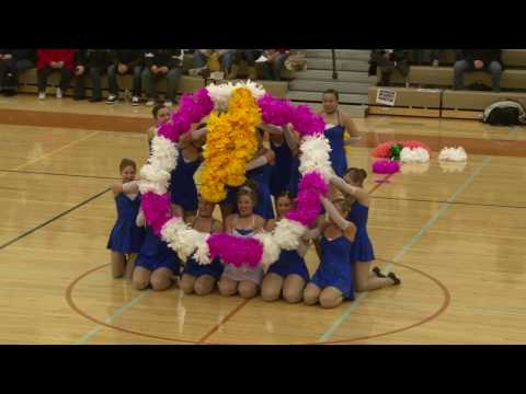 PNHS Poms - Cinderella Princess pom routine TDI dance cheer competition 2010 PEHS Plainfield IL