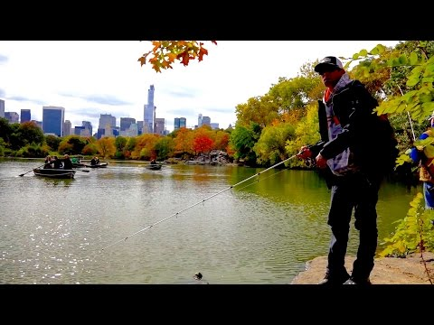 GOING IKE!!! Bank Fishing in Central Park (Ep. #7)