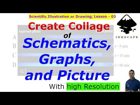 Create Collage of Graphs, Schematics, and Pictures | Scientific Illustration, Lesson-03