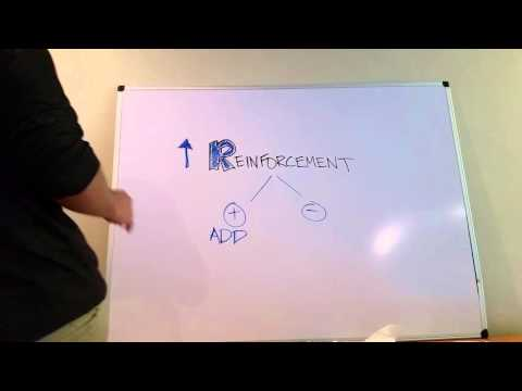 Difference Between Positive and Negative Reinforcement