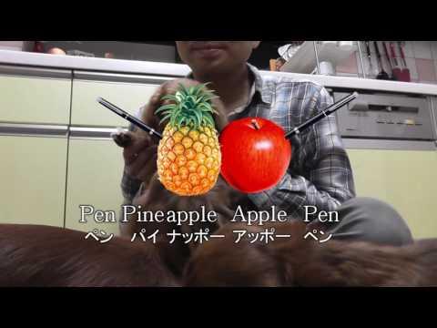 PPAPPP Pen-Pineapple-Apple-Pen on PowerPoint