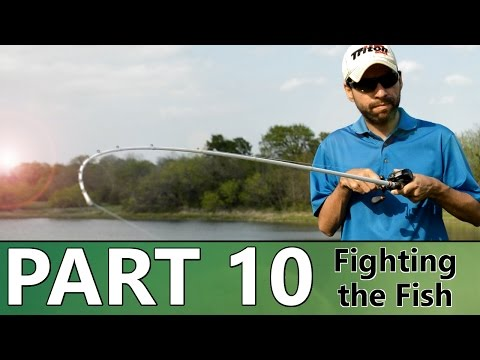 Beginner's Guide to BASS FISHING - Part 10 - Hooksets and the Fight