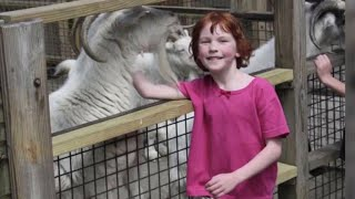 Animal sanctuary keeps 6-year-old Sandy Hook victim