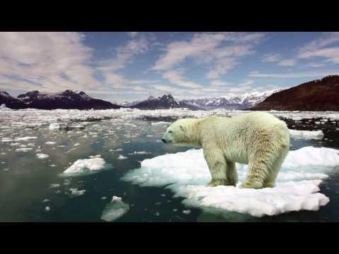 Reducing CO2 Emissions PSA