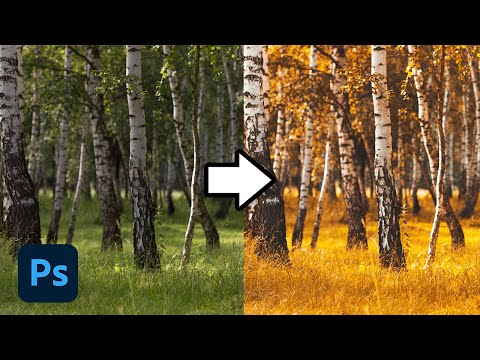 How To Change Colors In Lightroom