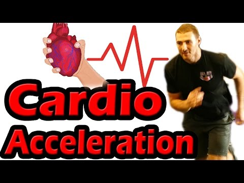 Cardio Acceleration | 10 Second on off Gym or Home Fat Burning Workout