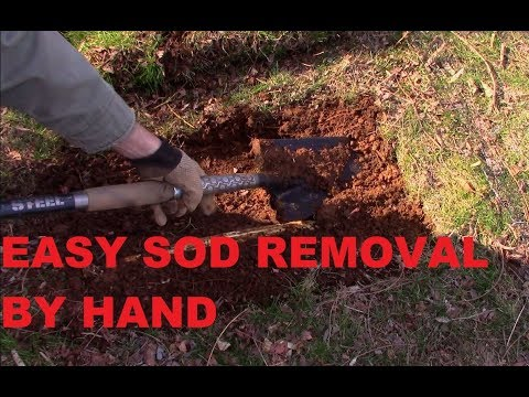 How to Remove Grass: The Easiest and a quick way how to remove grass / cut sod by hand/shovel