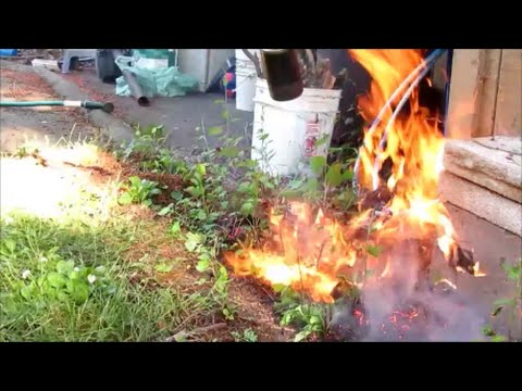 Propane torch to destroy weeds naturally - and burn my neighbors shed